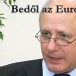 Bedől az Euro – 2013