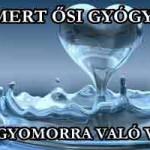 ELISMERT ŐSI GYÓGYMÓD AZ ÉHGYOMORRA VALÓ VÍZIVÁS