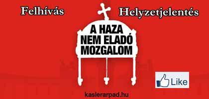 HELYZETJELENTÉS - FELHÍVÁS.