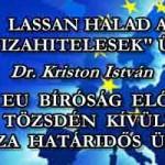 """LASSAN HALAD A DEVIZAHITELESEK"""" ÜGYE -AZ EU BÍRÓSÁG ELŐTT-TÖZSDÉN KÍVÜLI DEVIZA HATÁRIDŐS ÜGYLET"""