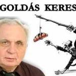 MEGOLDÁS KERESÉSE – DR. LÉHMANN GYÖRGY
