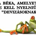"""A BÉKA, AMELYET LE KELL NYELNIÜK A """"DEVIZÁSOKNAK"""""""