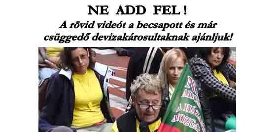 NE ADD FEL!