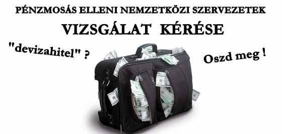 PÉNZMOSÁS ELLENI NEMZETKÖZI SZERVEZETEK - VIZSGÁLAT KÉRÉSE.