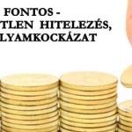 FONTOS-FELELŐTLEN HITELEZÉS, ÁRFOLYAMKOCKÁZAT