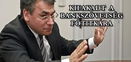 Kifakadt-a-Bankszövetség-főtitkára-CIVILKONTROLL-COM